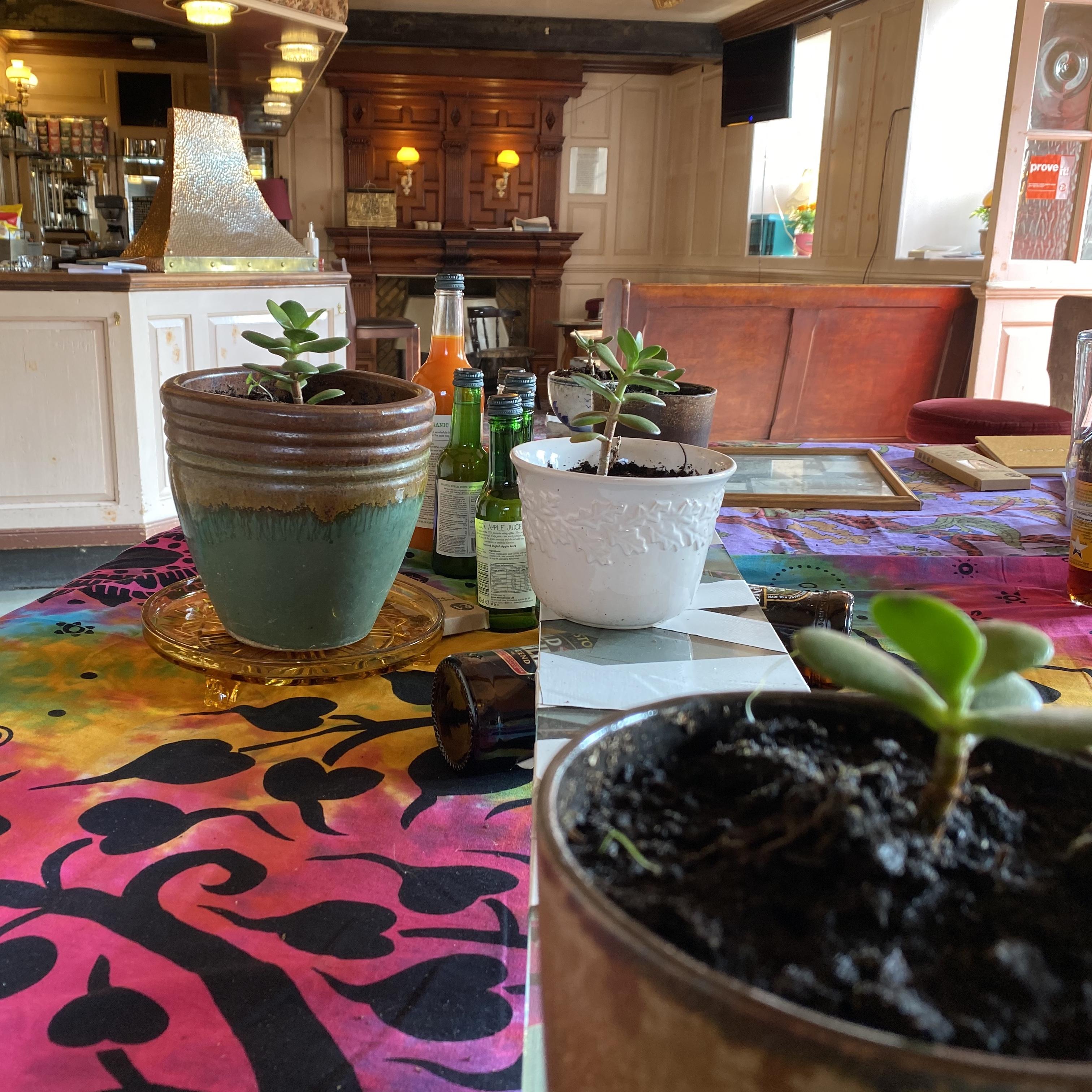 Plants Exchange and Portal B Internal Photo